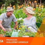 2º Charla de Jardinería – 2º Bloque: «Helechos, identificación y división» – G. Grimoldi