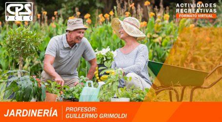 4 ° Charla de Jardinería – Bloque 2 – «Qué plantas absorben los compuestos orgánicos volátiles»